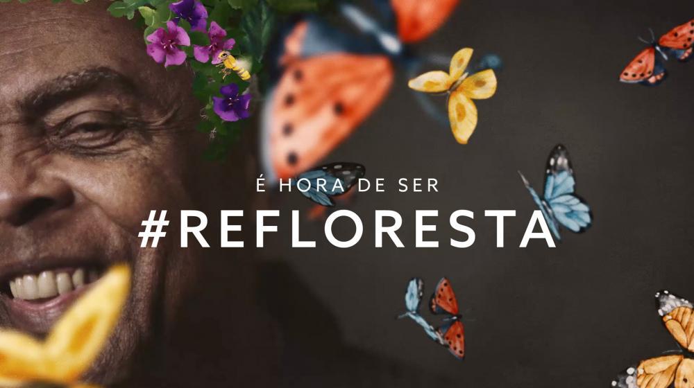 Foto: Instituto Terra/divulgação