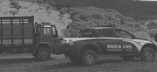 Foto: Polícia Civil de Minas Gerais/Divulgação