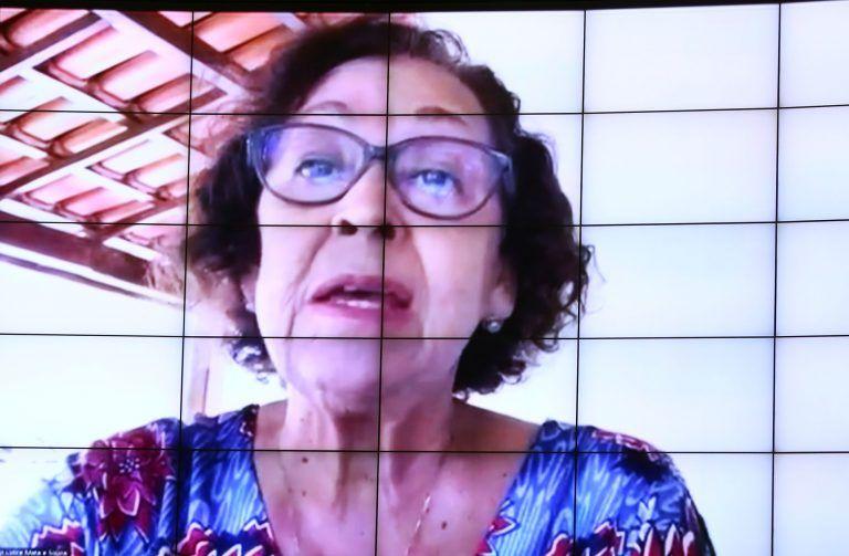 Lídice da Mata: acesso à cultura diminui conforme aumenta a idade do indivíduo - (Foto: Pablo Valadares/Câmara dos Deputados)