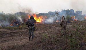 Incêndio no Pantanal no ano passado - (Foto: Divulgação/CBMS)