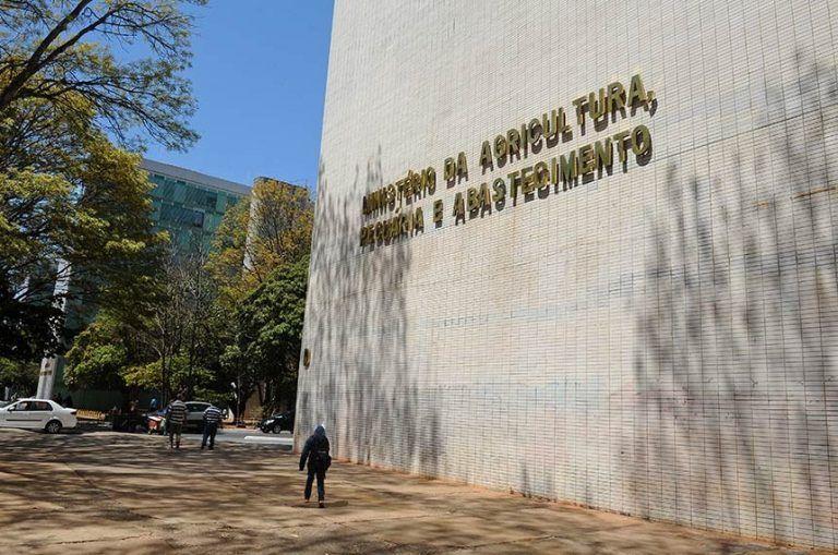 Operação tem aval do Incra e do Ministério da Agricultura - (Foto: Marcos Oliveira/Agência Senado)